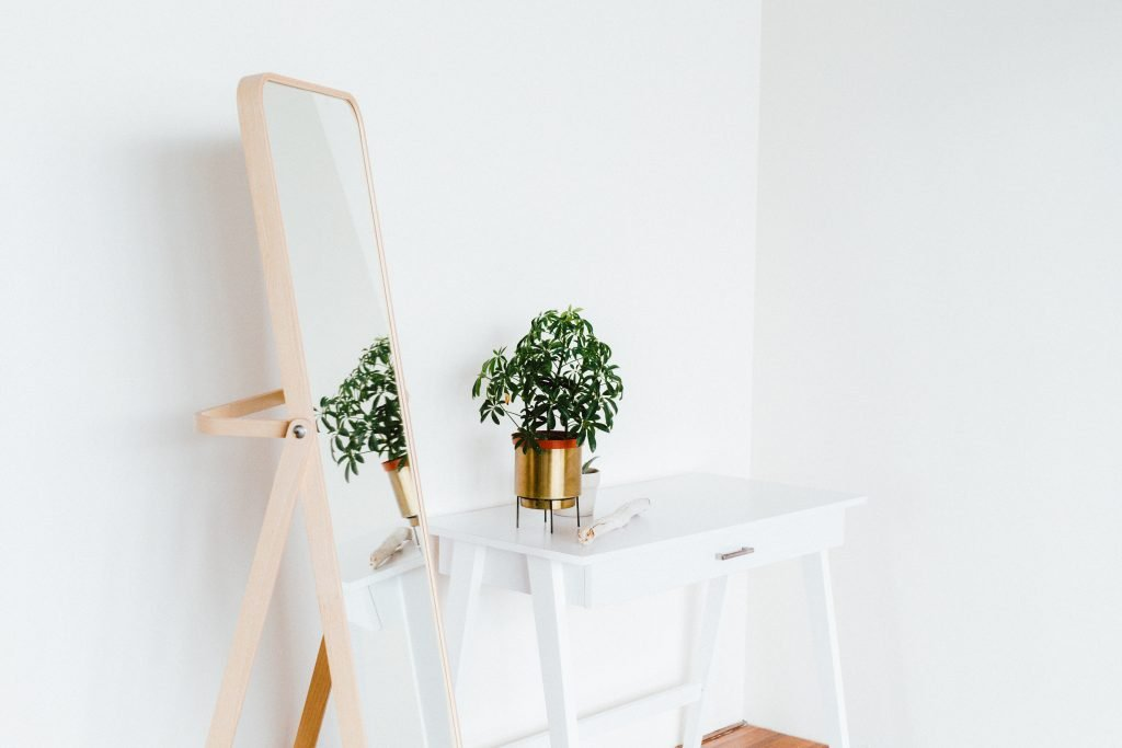 potted plant on side table