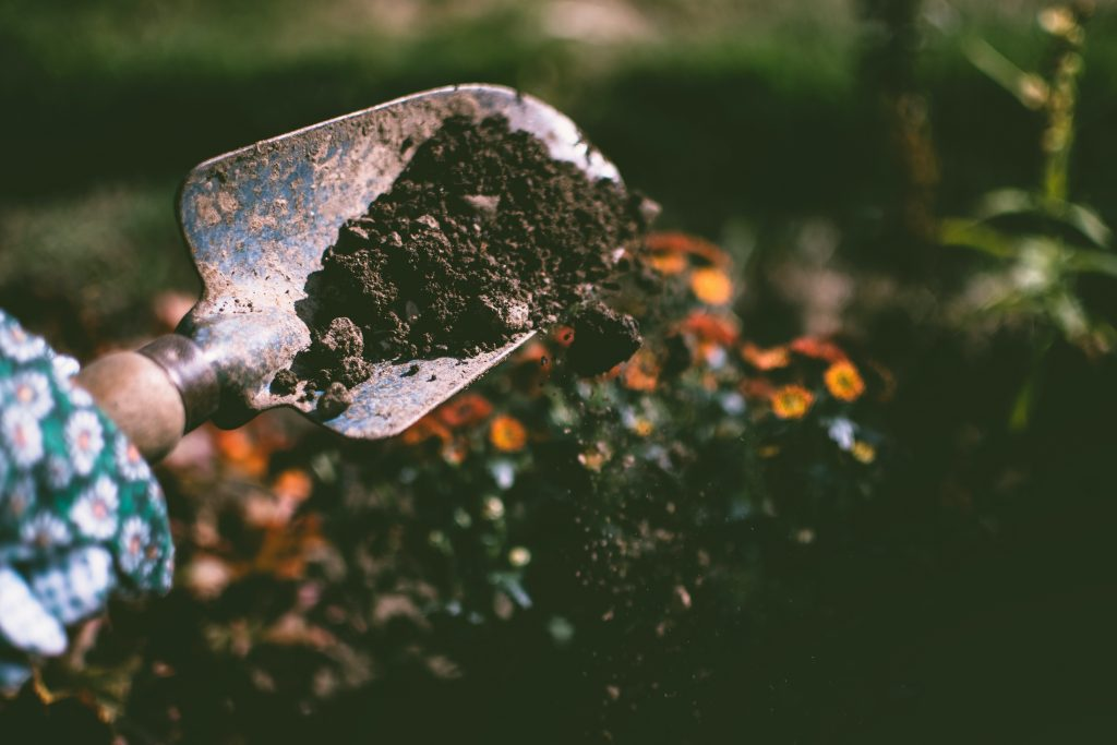 hand shovel picking up dirt with flowers in the background